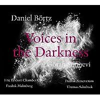 Daniel Bortz: Voices in the Darkness