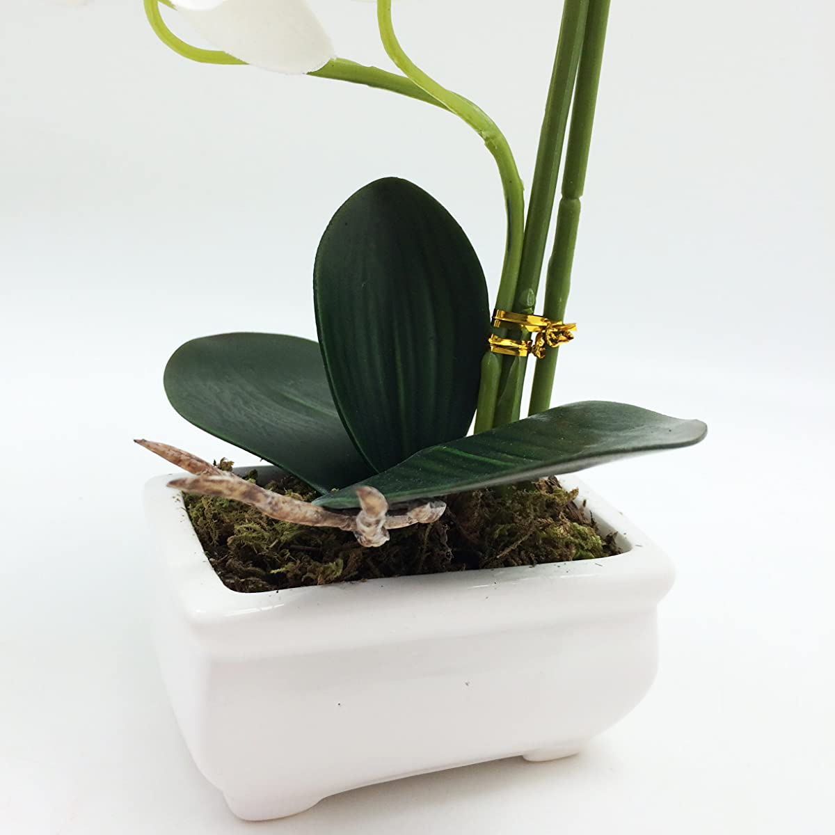 """PEPPERLONELY Brand 13"""" H Artificial Ceramic Potted Plant Orchid, White"""