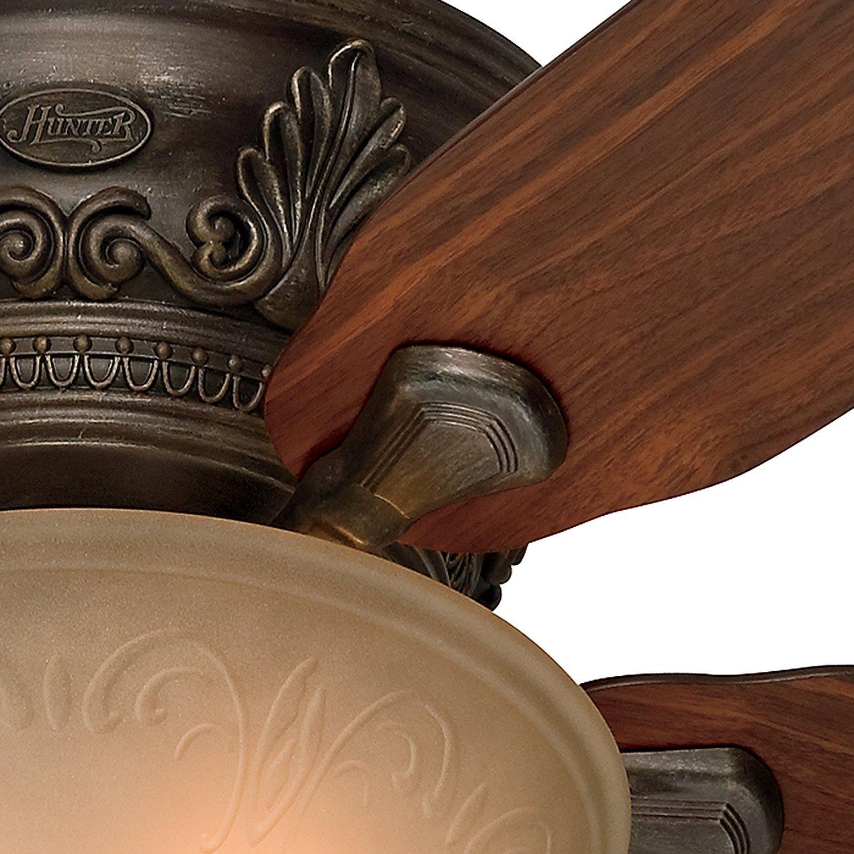 Hunter Fan 52-Inch Low Profile Roman Bronze Finish Ceiling Fan with Tea Stain Glass Light Kit Renewed