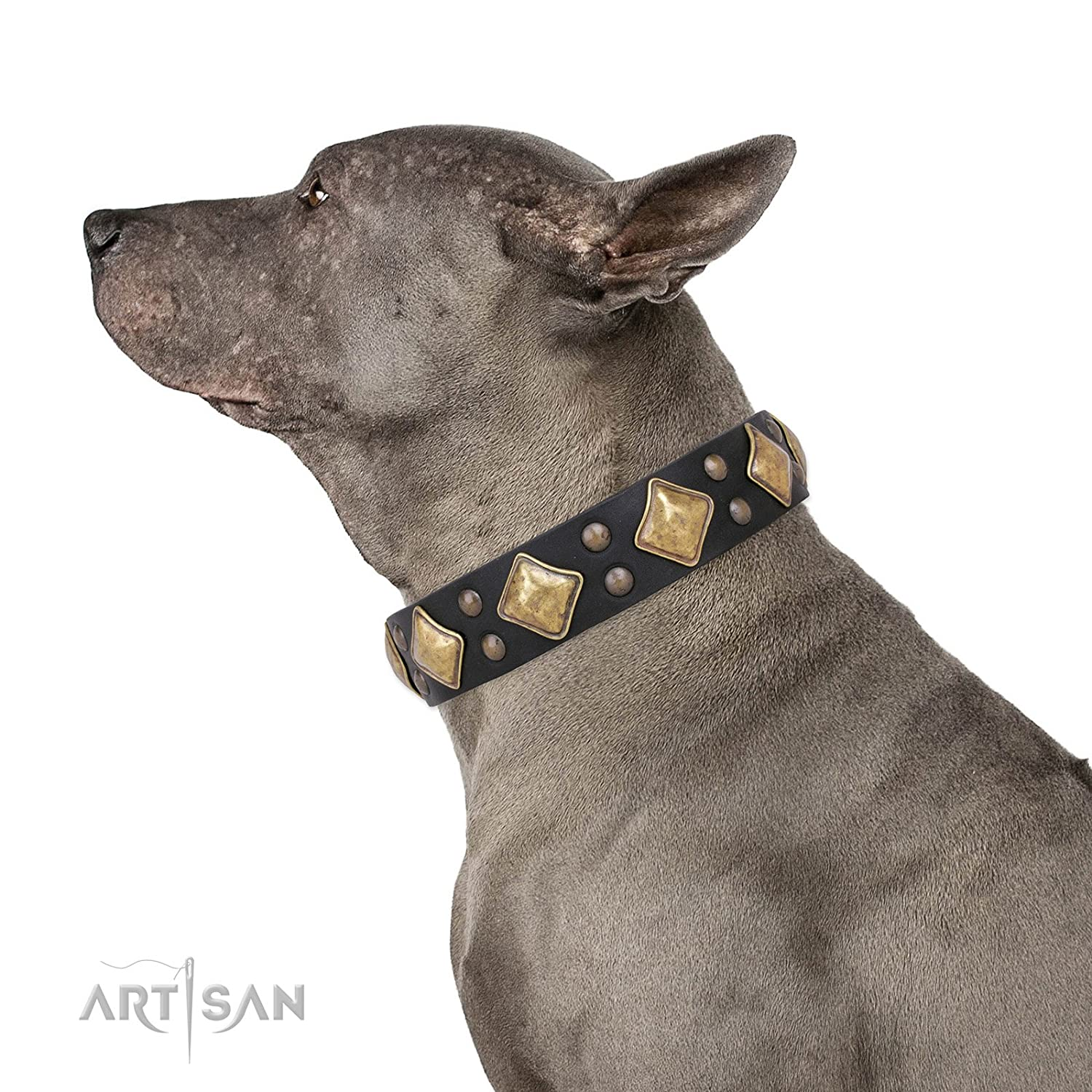Fits for 19 inch (48cm) dog's neck size FDT Artisan 19 inch Black Leather Dog Collar with Brass Plated Decor Fancy Schmancy 1 1 2 inch (40 mm) Wide