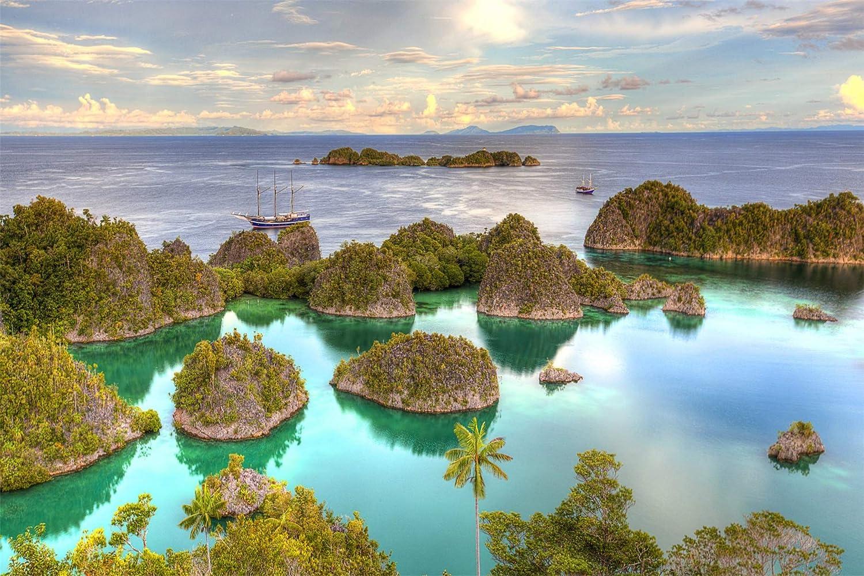 ZZYAMZ Pintura Digital De Bricolaje, Juego De Pintura Al Óleo Trópicos Islas del Mar 40*50Cm: Amazon.es: Juguetes y juegos