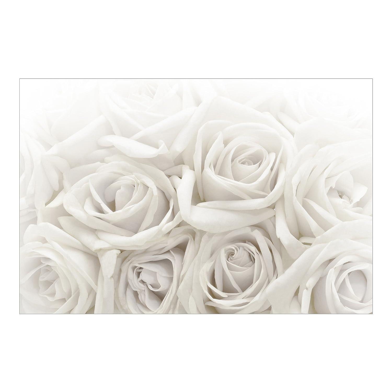 Vliestapete Premium – weiß Roses – Wandbild breit Tapete Wand Wandbild Foto Funktion wall-art Tapete Wandmalereien Schlafzimmer Wohnzimmer, Dimension HxB  290 cm x 432 cm