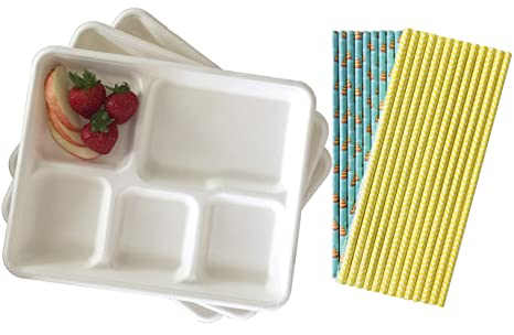 Retro Style Lunch Trays - Biodegradable - 24 Pack and 50 Paper Drinking  Straws