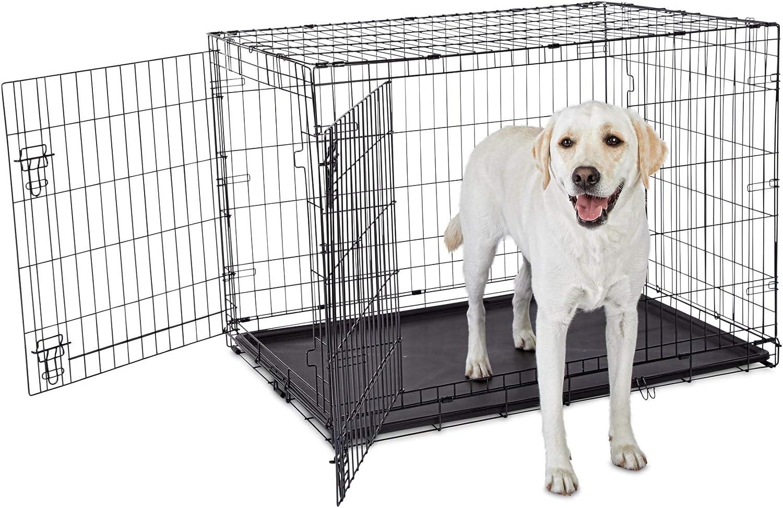 Petco Brand - Animaze 2-Door Folding Dog Crate, 42.8