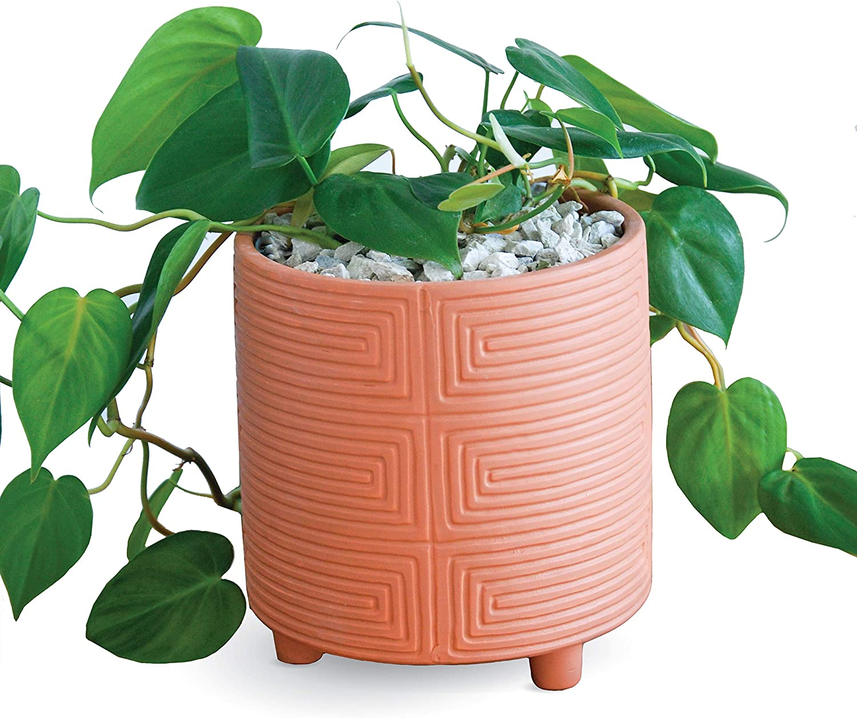 Carlton Lane Terra Cotta Pot