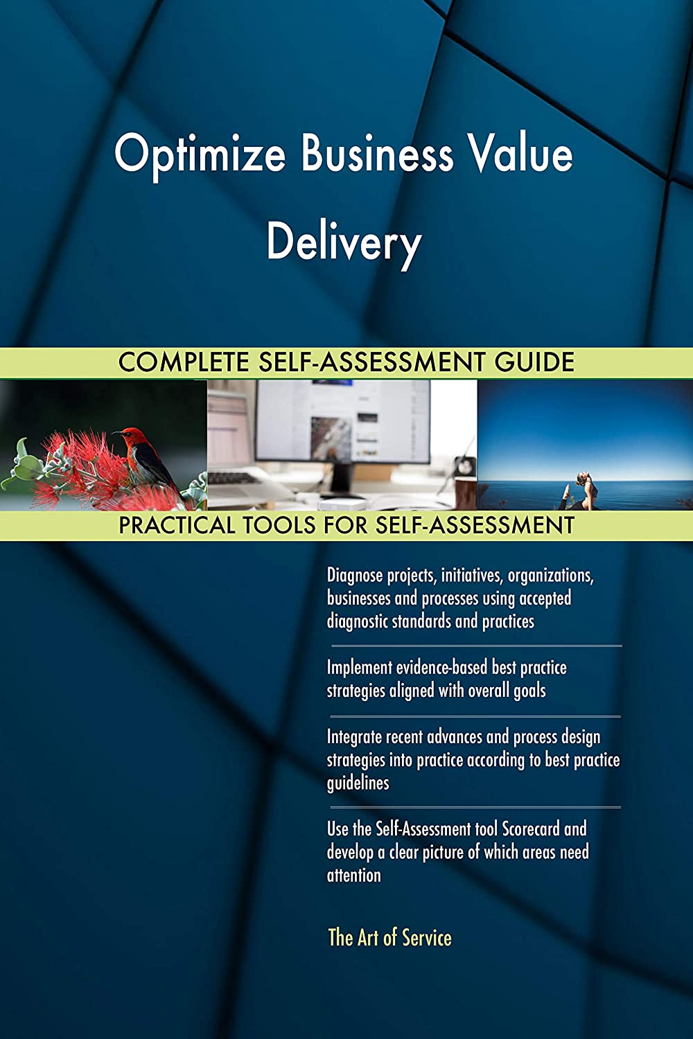 Optimize Business Value Delivery All Inclusive Self Assessment More Than 700 Success Criteria Instant Visual Insights Comprehensive Spreadsheet Dashboard Auto Prioritised For Quick Results Amazon Co Uk Software