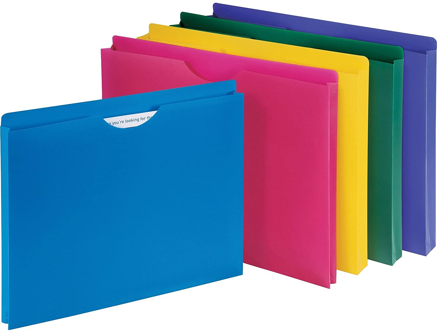 "1InTheOffice Poly File Jacket File Folder, Letter 1"" Expanding File Jacket, 10-Pack, Assorted"
