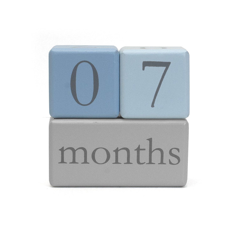 Child to Cherish Baby Monthly Milestone Photo Age Blocks Pink