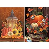 2 Pack DIY 5D Diamond Painting Kits for Adults, Halloween Pumpkin Bird Round Full Drill Crystal Rhinestone Embroidery…