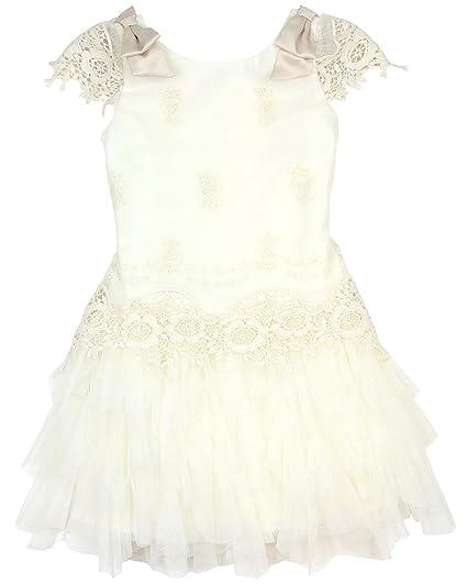 1904af59c7e Amazon.com  Biscotti Girls  Drop Waist Dress Feeling Fancy