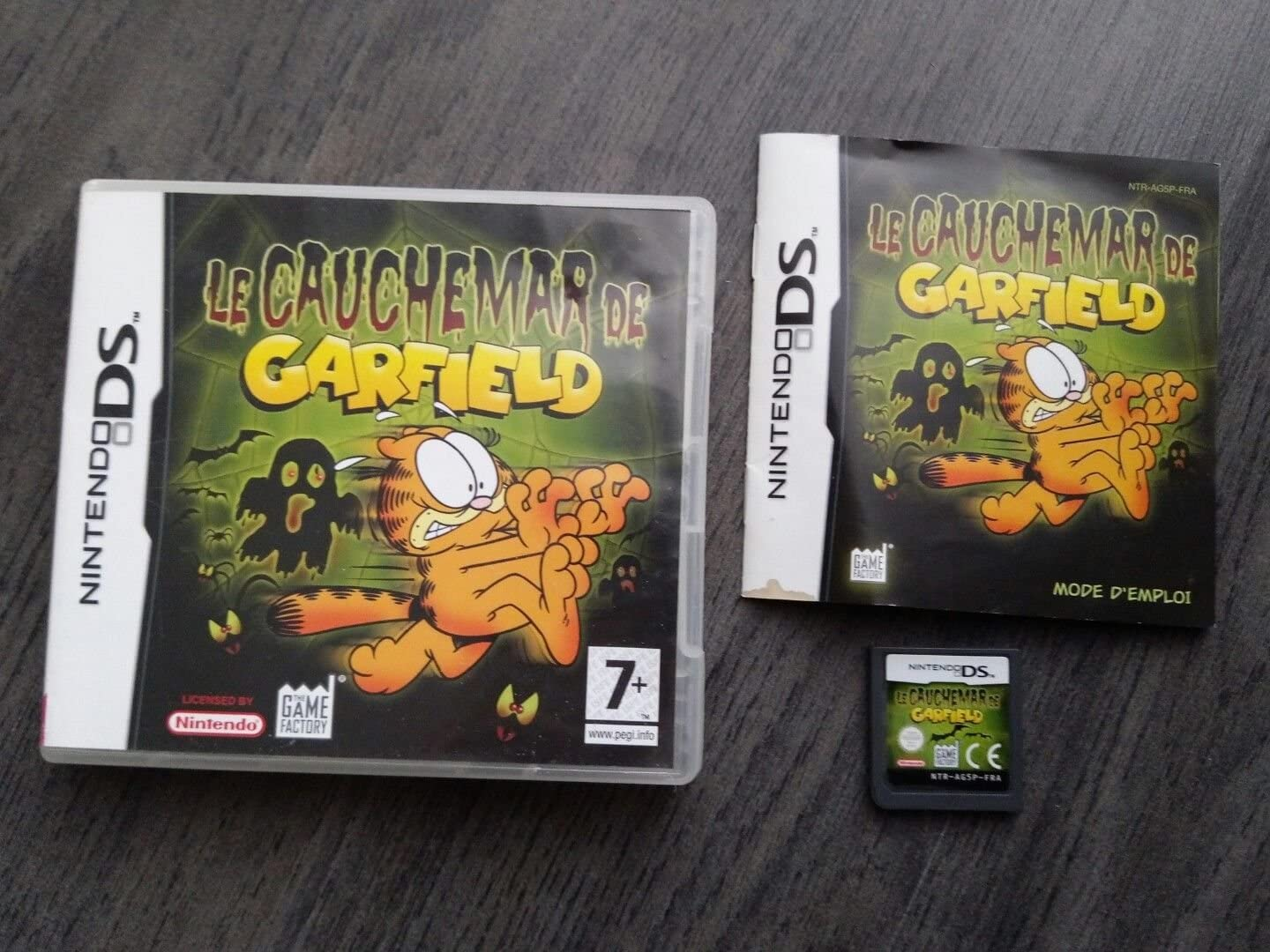 Garfield Nightmare Nintendo Ds By American Game Factory Nintendo Ds Computer And Video Games Amazon Ca