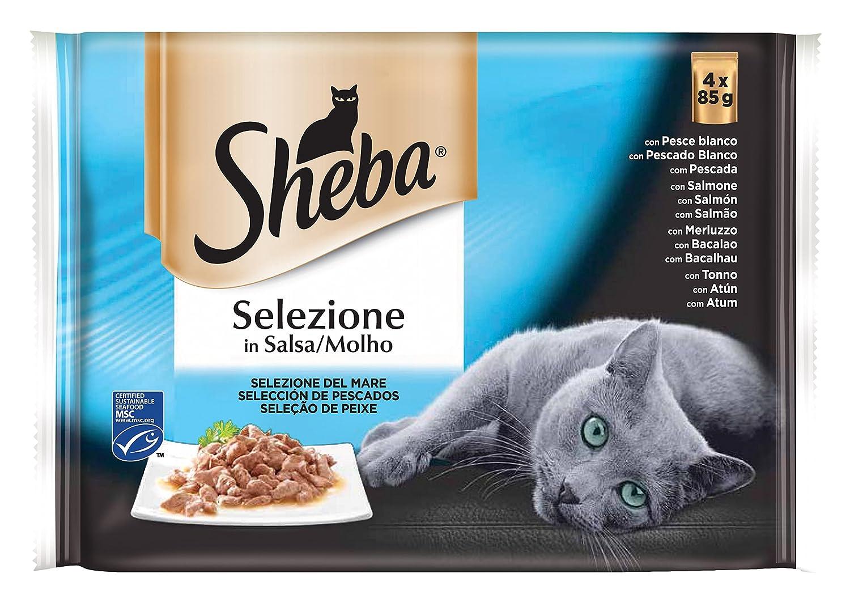 Sheba Bolsitas para Gatos, Pescados en Salsa - 340 gr: Amazon.es: Amazon Pantry
