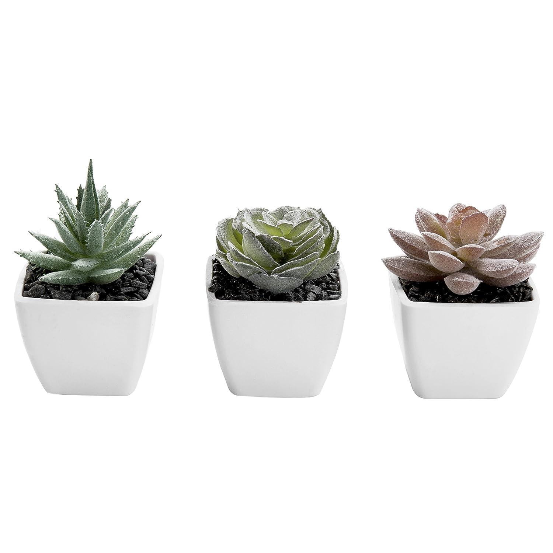 MyGift Set of 3 Miniature Artificial Succulent Plants in White Pots