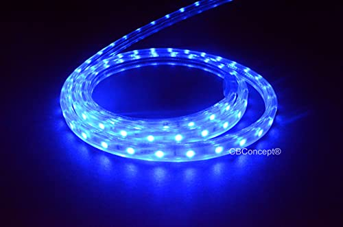 CBConcept UL Listed, 150 Feet, 16500 Lumen, BLUE, Dimmable, 110-120V AC Flexible Flat LED Strip Rope Light, 2760 Units 3528 SMD LEDs, Waterproof IP65, Accessories Included, Size 0.45 Inch Width X 0.28 Inch Thickness- Christmas Lighting, Indoor Outdoor Rope Lighting, Ceiling Light, Kitchen Lighting Ready to use