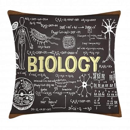 ABAKUHAUS Educativo Funda para Almohadar, Pizarra Negra Biología Símbolos Manuscritos Escuela Salón de Clase, Material Lavable con Cremallera Colores ...