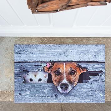 Antikas - felpudo decorativo con perro y gato - felpudo ilustración en 3D - felpudo con animales puerta de la casa: Amazon.es: Hogar