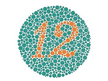 Amazon.com: KANEHARA Ishihara Test Chart Books for Color Deficiency ...