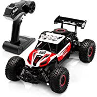 WQ Rc Car Toy Remote Control Racing Car, 2.4ghz Off Road Rc Truck, 1/14 Scale Rc Truck - All Terrain Waterproof Toys…