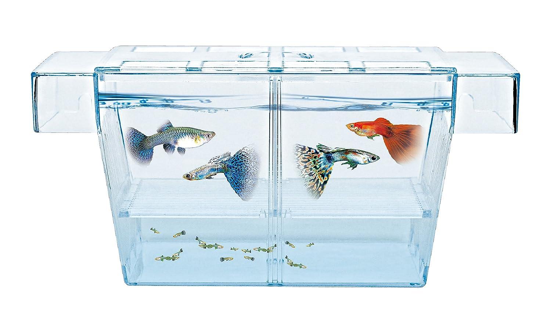 (BX-L) HAQOS Aquarium Fish Tank Breeder Box