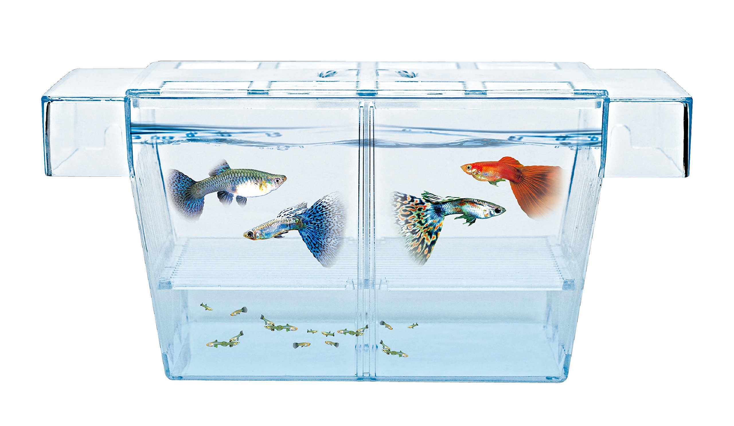 HAQOS Aquarium Fish Tank Breeder Box BX-L by HAQOS