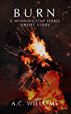 Burn: A Morningstar Series Short Story