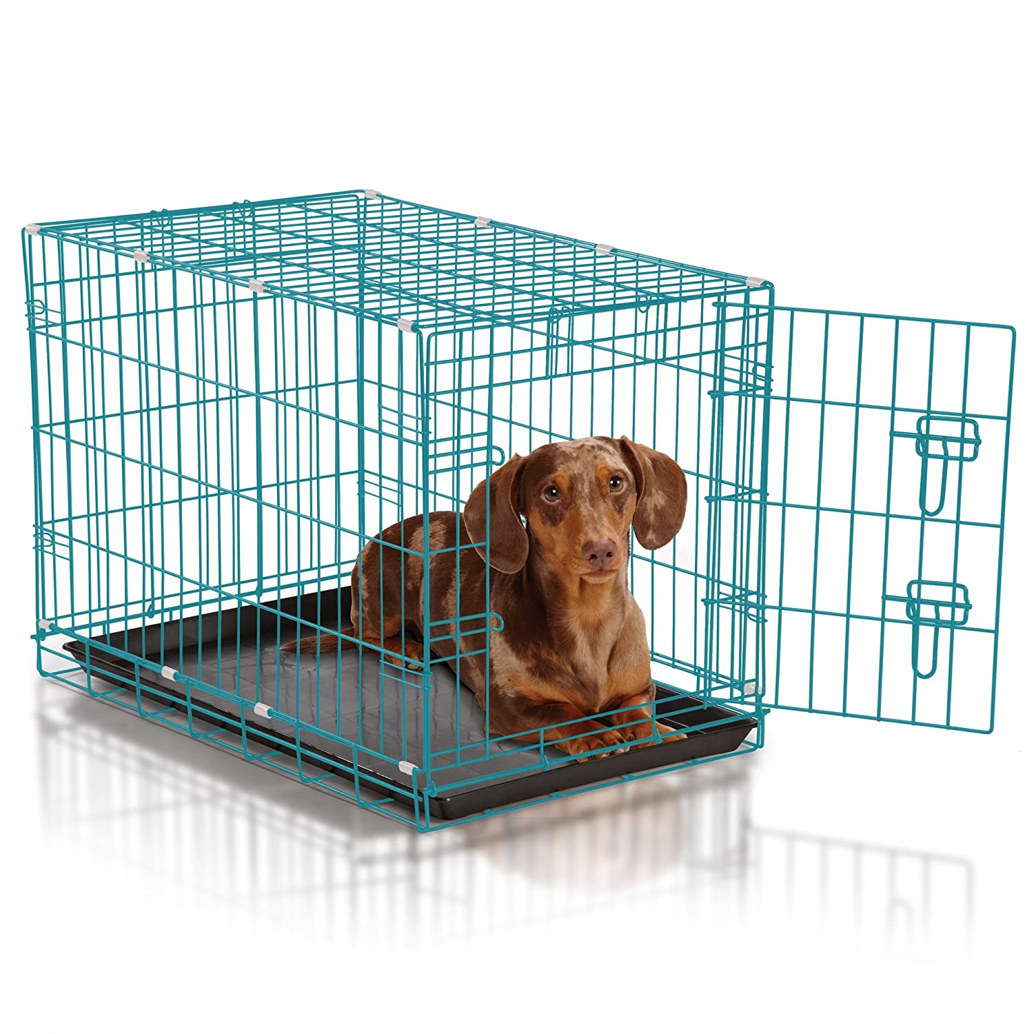 Amazon.com : Easy Dual Latching Dog Crate, Medium, Teal : Pet Supplies