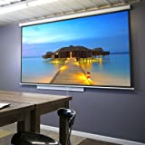 "ZENY 100"" Projector Screen 16:9 HD Projection"