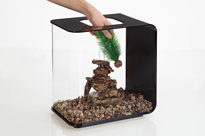 biOrb 46083.0 Feather Fern Set Small Green Aquariums