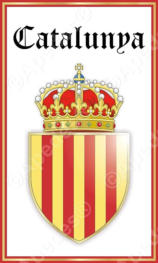 Adhesivo catalán para tableta de ordenador de España Cataluña, 7, 6 x 12, 7 cm: Amazon.es: Jardín