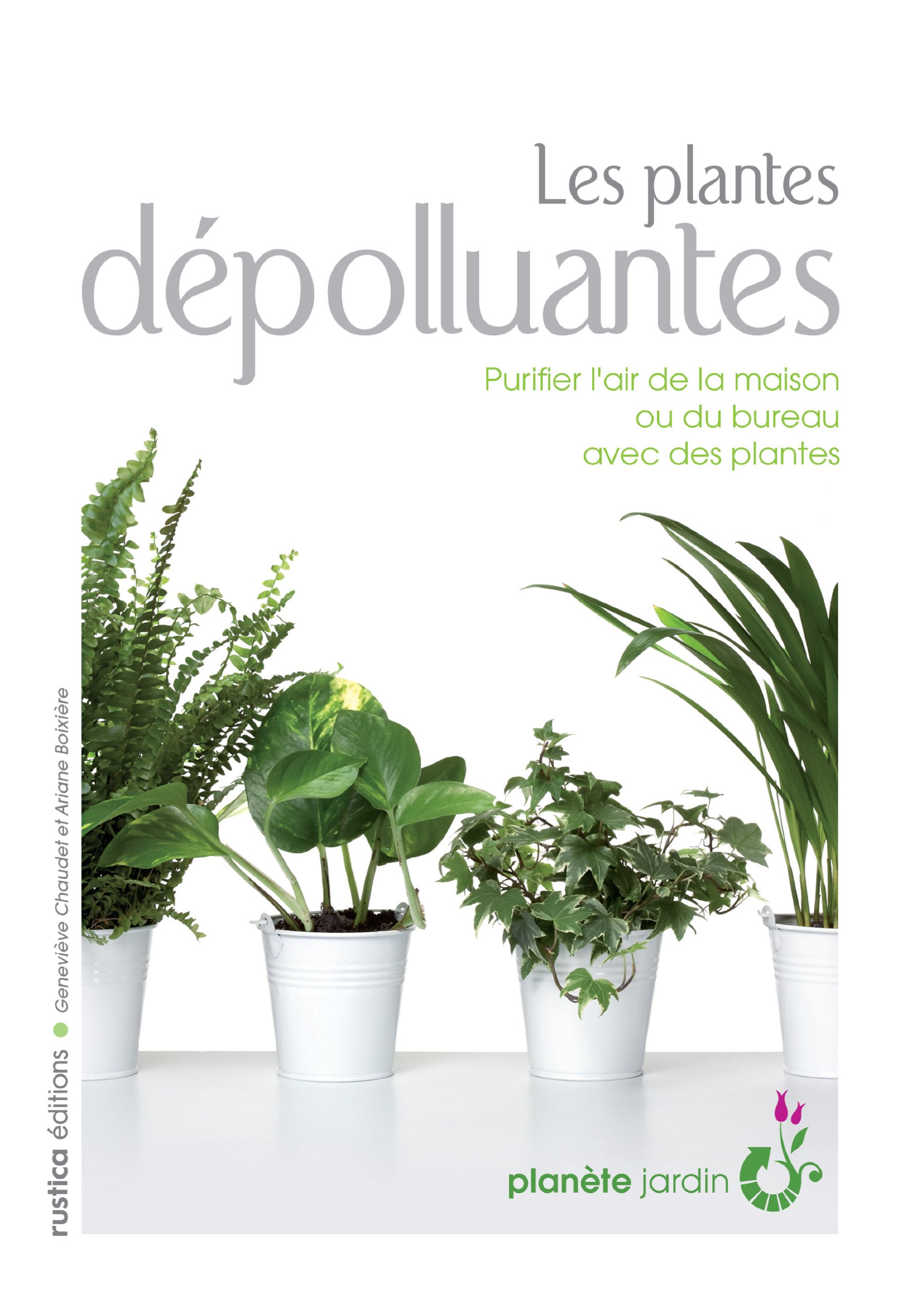 plante dpolluante interieur dpolluez luintrieur de chez vous avec la fougre plante dpolluante. Black Bedroom Furniture Sets. Home Design Ideas