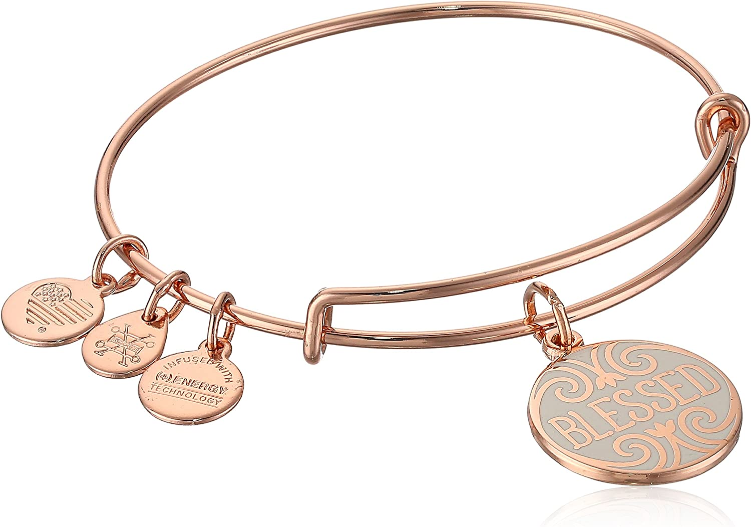 Alex and Ani Womens Words are Powerful Blessed Bangle