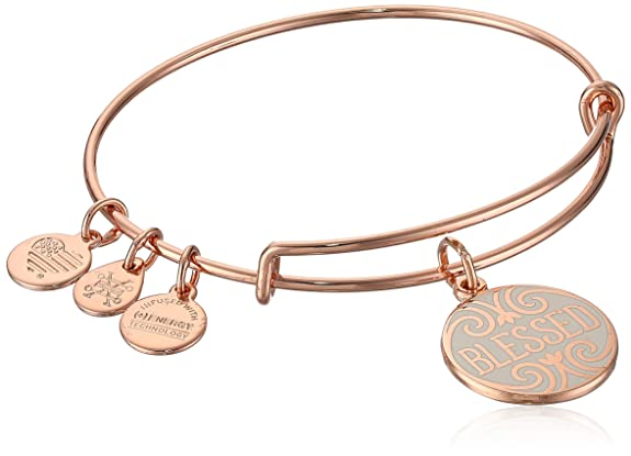 Alex And Ani Womens Words Are Powerful, Blessed Ewb Bangle Bracelet, Shiny Rose, Expandable by Alex And Ani