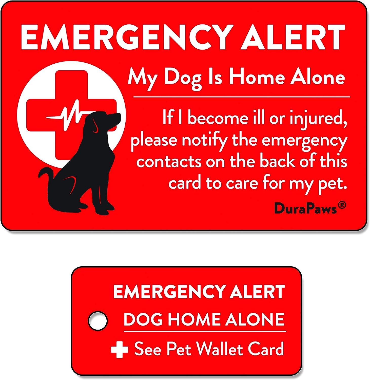 Amazon.com: durapaws mascotas, perros y gatos son el hogar ...