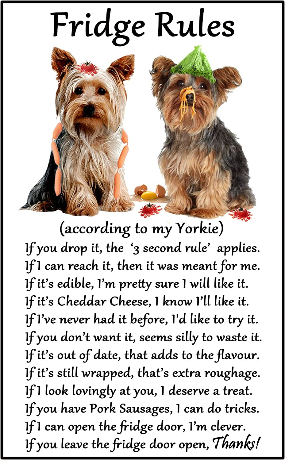 Fridge Magnets Yorkshire Terrier Yorkie Gift Fridge Rules Large Fun Flexible Size 16cms X 10 Cms Approx 6 X4 Amazon Co Uk Kitchen Home