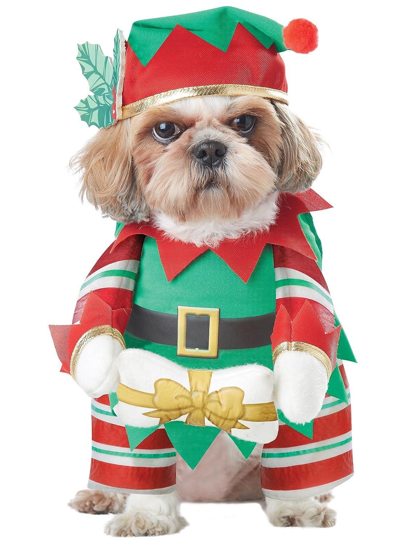 Amazon.com: Disfraz de perro, diseño de elfo de California ...