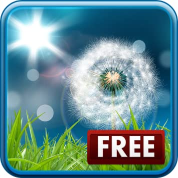 Amazoncom Dandelion Live Wallpaper Free Appstore For Android