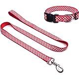 Glow Castle® Hundehalsband mit Leine Set, Rot-Weiss trendiges Karo-Design, das perfekte Geschenk für ihren Hund, Halsband 70*2.5cm (für große Hunde) und 50*2.5cm (für kleine Hunde), Leine 120*2.5cm.