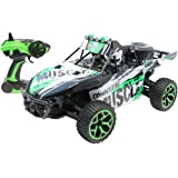 brigamo 446 2 4 ghz rc truggy max52 monstertruck ferngesteuert rc auto spielzeug. Black Bedroom Furniture Sets. Home Design Ideas