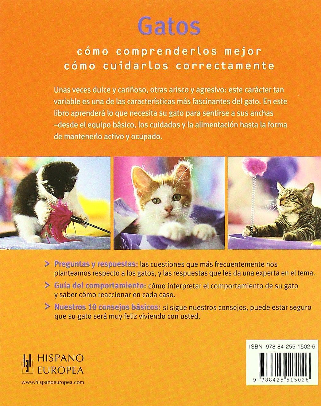 Gatos sanos y felices / Healthy and happy cats (Spanish Edition): Katrin Behrend: 9788425515026: Amazon.com: Books