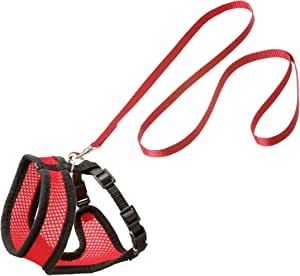Flamingo kitten harness and lead set for Cats