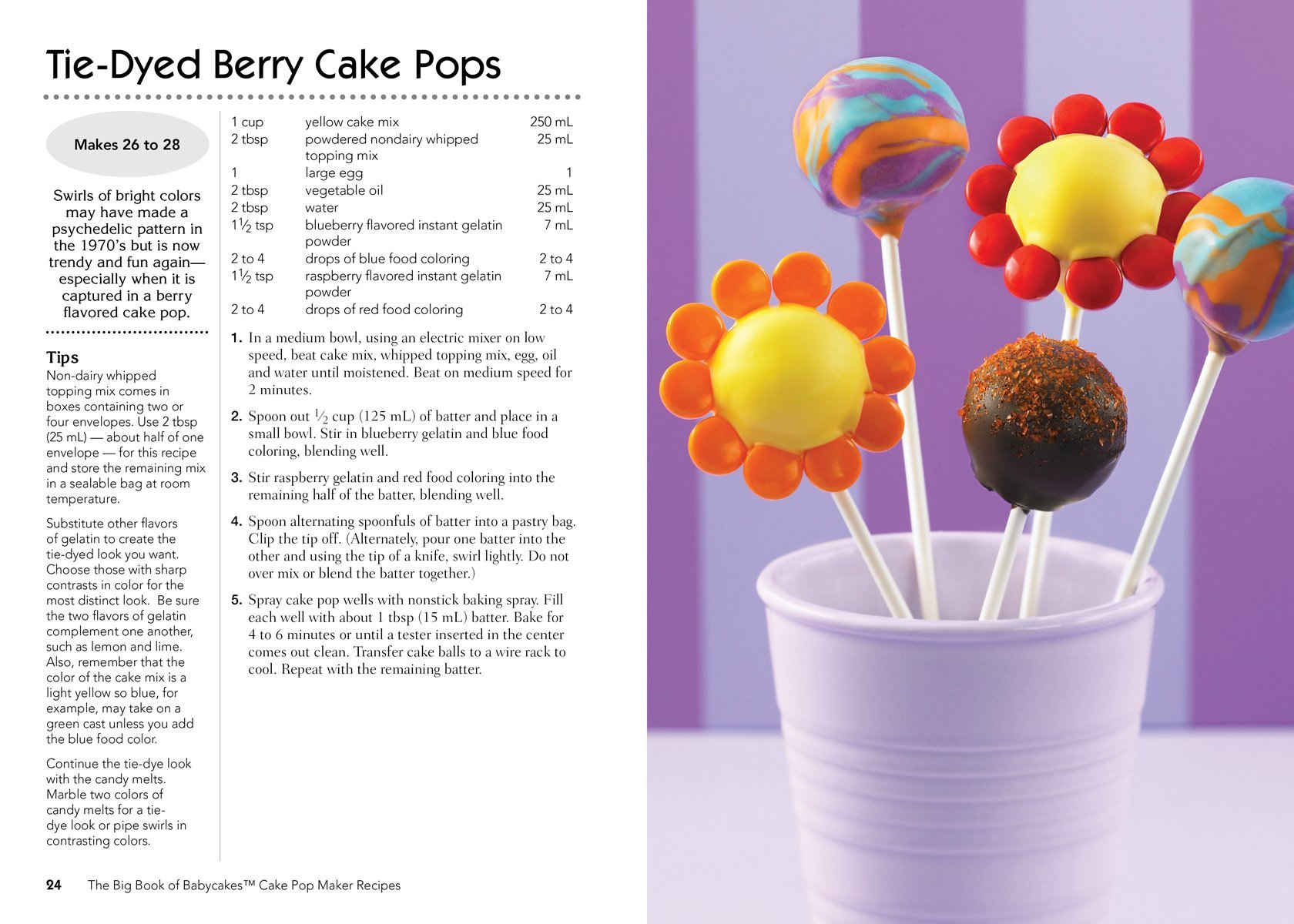 The Big Book of Babycakes Cake Pop Maker Recipes: Homemade Bite-Sized Fun!:  Kathy Moore, Roxanne Wyss: 9780778804185: Amazon.com: Books