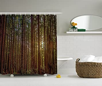 California Shower Curtain Tree Nature Decor By Ambesonne Redwood Forest In And Sunset Picture