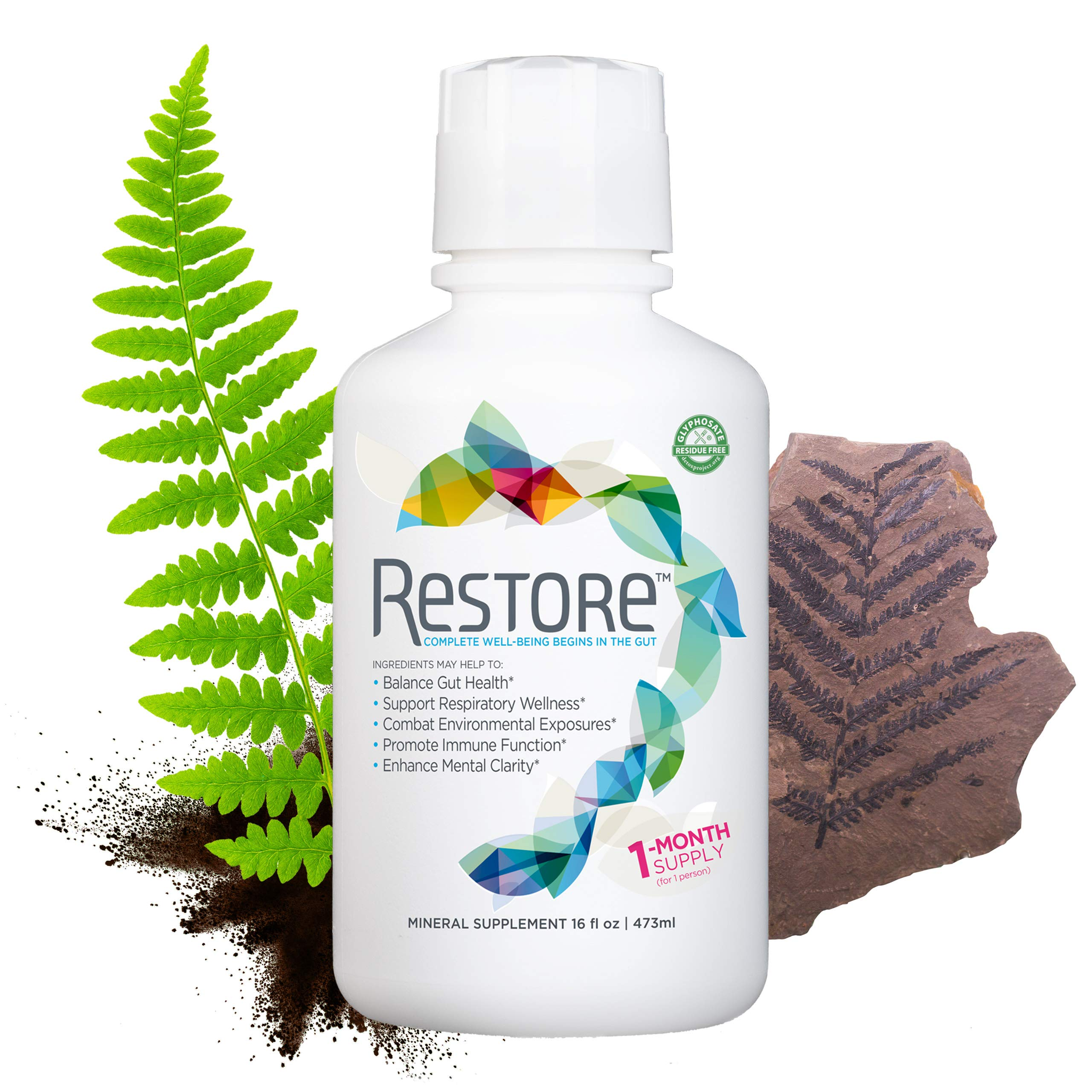 Restore Gut-Brain Health   Dr. Formulated – Probiotic & Enzyme Alternative – for Digestive Health, Immune Support, Metabolism & Energy Boost   1-Month Supply