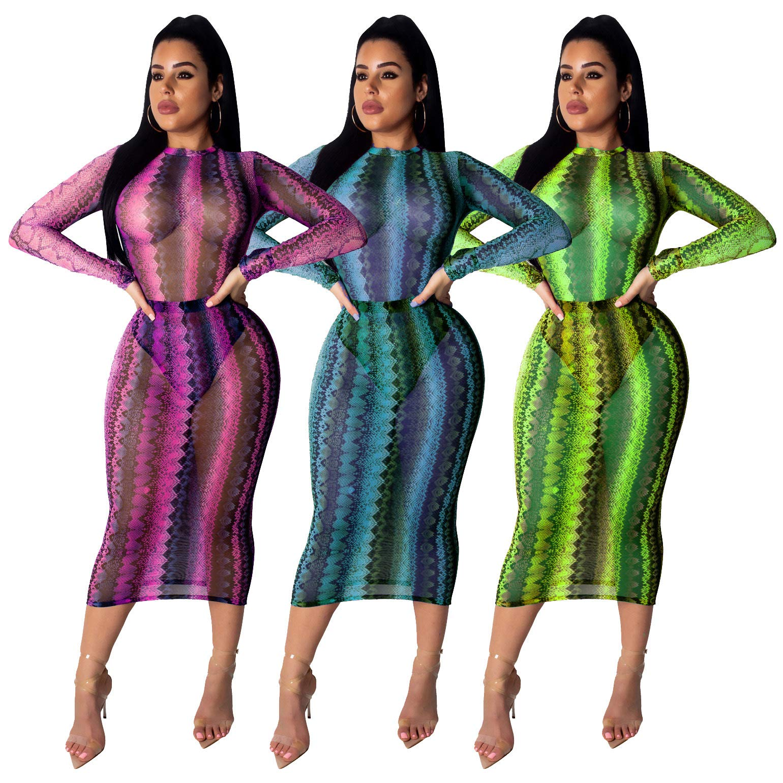 Women\'s Mesh Beach Cover Ups - Sexy See Through Long Sleeve Bodycon Midi Dress Medium Green
