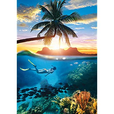 Buffalo Games - Into The Blue - 500 Piece Jigsaw Puzzle: Toys & Games