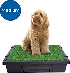 PetSafe Pet Loo - Medium Portable Toilet for Dogs and Pets, Compact, Hygienic for Indoor Use, with Grass Pad