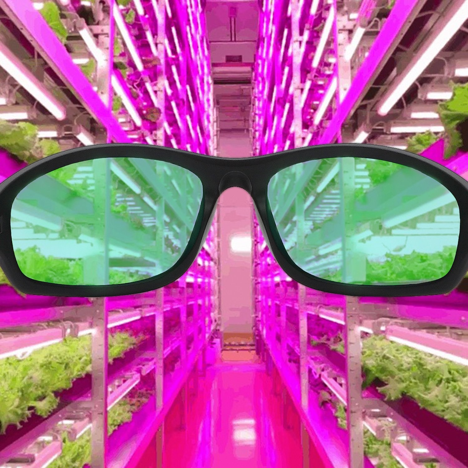 LEDGrower1 Apollo Horticulture UV400 LED Indoor Growing Hydroponics Grow Light Room Glasses for Intense LED lighting Visual Eye Protection