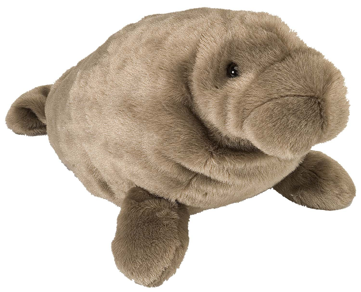 Super Awesome Manatee Gifts! O-M-G for Manatee! - Gift Canyon
