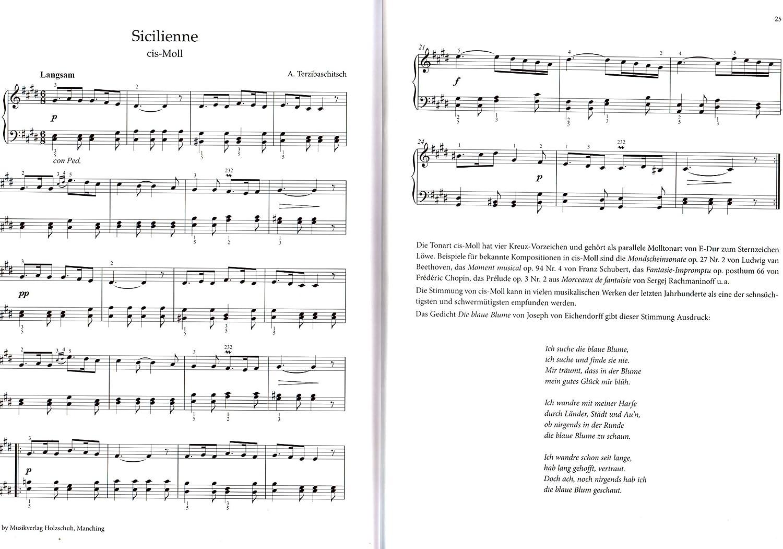 con las estrellas mediante todos arcilla – 24 Partituras de piano por el quinte Compás – Autor: Anne Terzibaschitsch Verlag: madera zapato vhr3568 9783864340963: Amazon.es: Instrumentos musicales