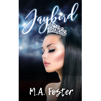 Jaybird (Heritage Bay Series Book 1) (English Edition)